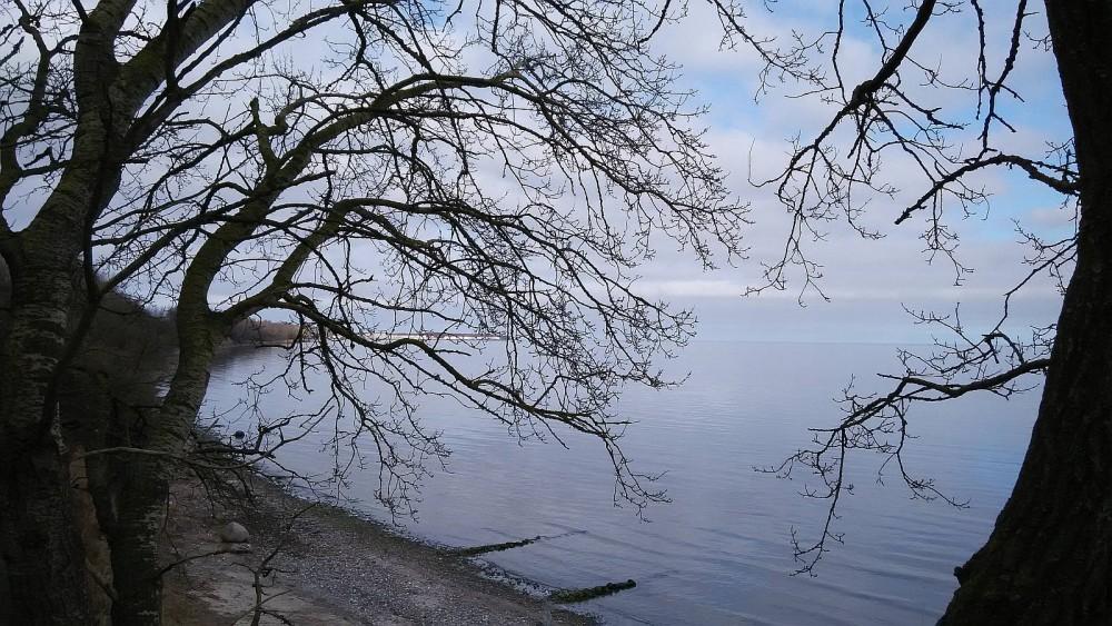 An der Ostsee, Anfang März